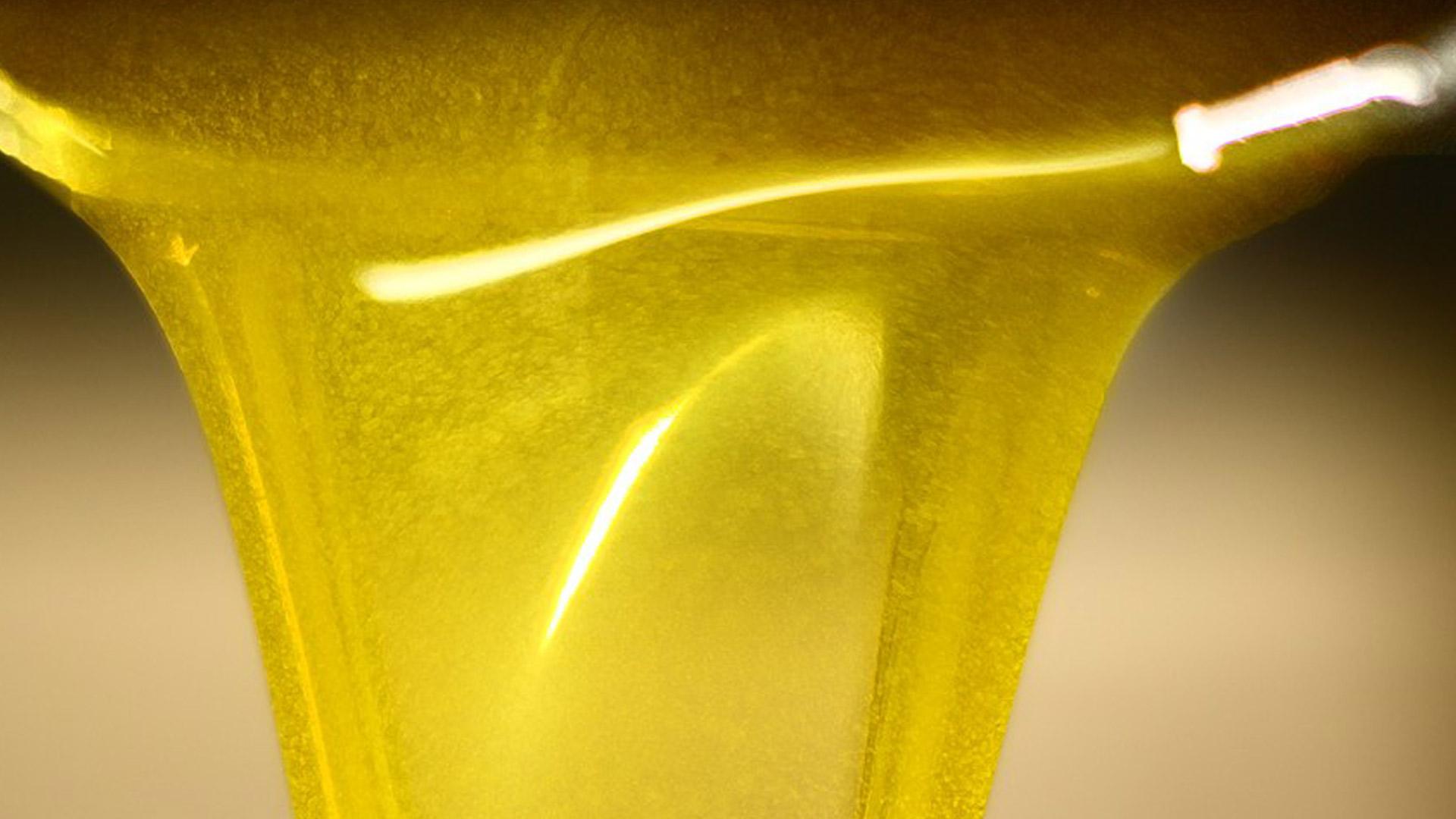 Vi spieghiamo l'olio d'oliva!