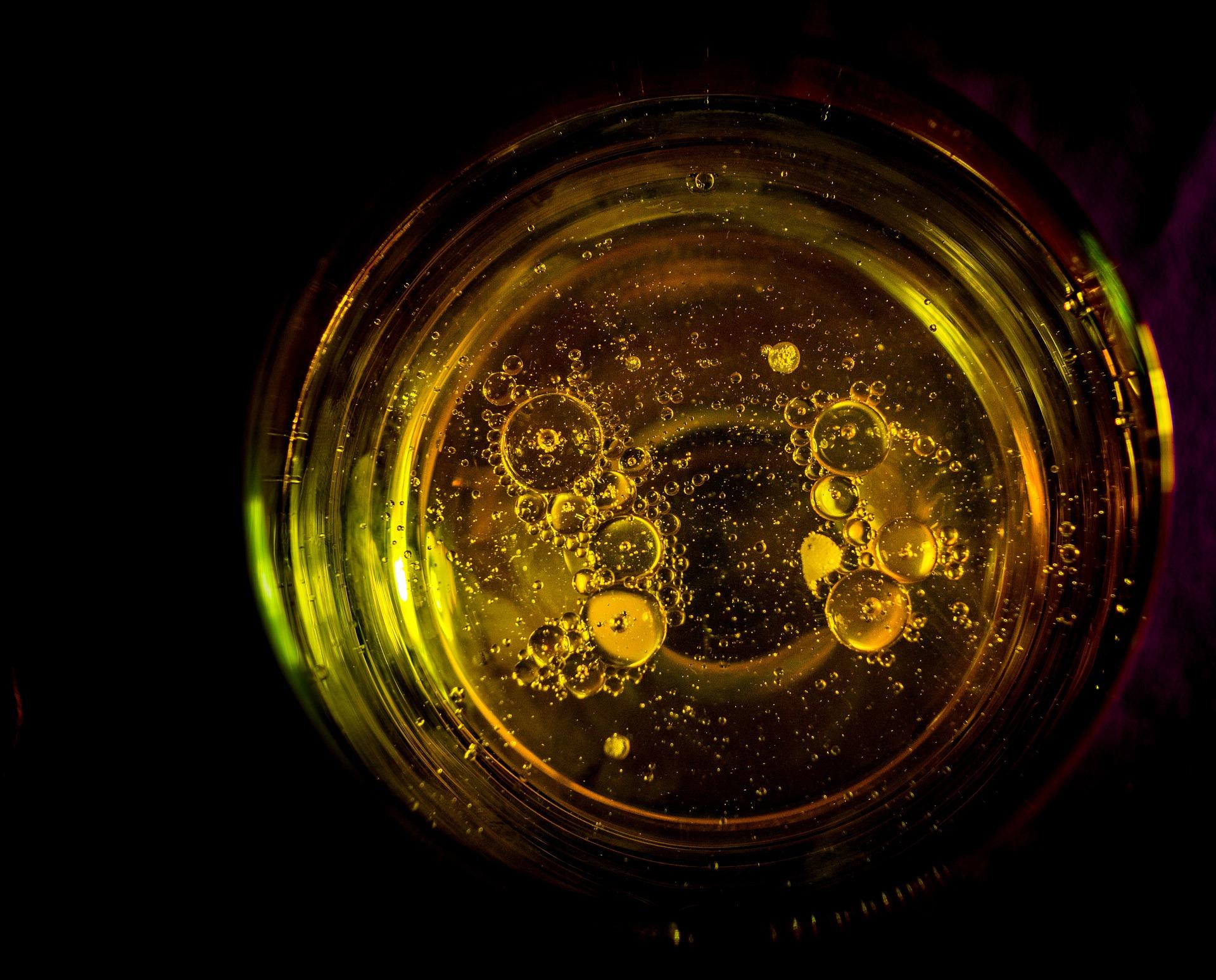 Punzo InForma: l'olio extravergine di oliva e le possibili frodi.